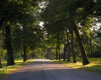 Comoedienhaus Park