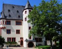 Schloss Schönborn AUssen mit Baum